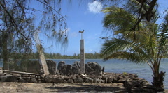 Huahine zooms on wooden bird Stock Footage