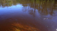 River water reflection closeup shot Stock Footage