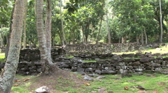 Huahine residential terraces Stock Footage