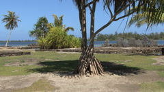 Huahine sacred stones framed by tree Stock Footage