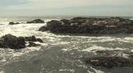 Sea lions on rocks 4 Stock Footage
