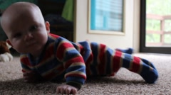 Baby struggles to crawl Stock Footage