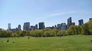 Stock Video Footage of Central Park Sheep Meadow wide tilt down from sky