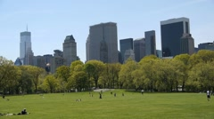 Central Park Sheep Meadow tight tilt down - stock footage