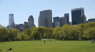 Stock Video Footage of Central Park Sheep Meadow tight tilt down
