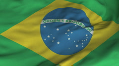 Seamless Waving Brazilian Flag with Fabric Texture Stock Footage