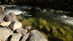 River Green Pool 221 29.97p Stock Footage