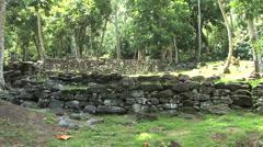 Huahine hillside archeological site Stock Footage