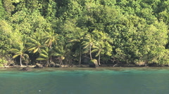 Huahine view of palms on shore Stock Footage