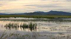 Marsh Sunset 3424 Stock Footage