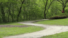 Woman jogging at the park with weights Stock Footage