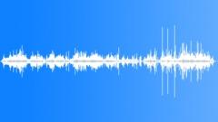 Dry Leaf 05 Sound Effect