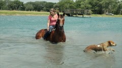 Girl taking her horse in deep water Stock Footage