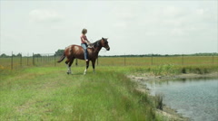 Riding the horse in the pond Stock Footage