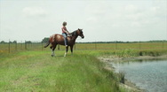 Stock Video Footage of riding the horse in the pond