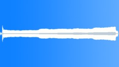 Weedwacker,Gas,Idles,Low-High - sound effect