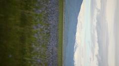 Marsh Spring Vertical 3430 Stock Footage
