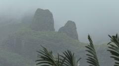 Moorea misty mountain with bird Stock Footage