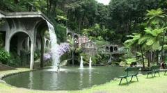 Tropical Garden Madeira 20110422 145235 Stock Footage