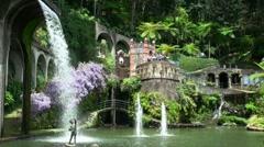 Tropical Garden Madeira 20110422 145357 Stock Footage