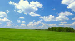 Green meadow Stock Footage