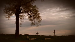 Cemetery crosses - stock footage