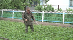 Man cuts the grass mower Stock Footage