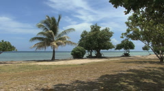 Raiatea coast at marae - stock footage