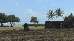 Raiatea Taputapuatea marae 1 Stock Footage