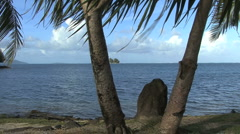 Raiatea stone and palms by the sea Stock Footage