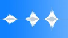Hooray! children shout in polish Sound Effect