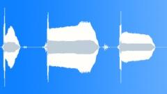 Carnival whistler - trumpet - sound effect
