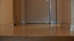 person entering a hotel room with luggage - stock footage