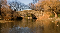 New York Central Park Time-Lapse Gapstow Bridge – 480x270 Stock Footage