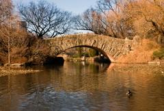 New York Central Park Time-Lapse Gapstow Bridge – NTSC Stock Footage