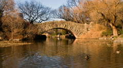 New York Central Park Time-Lapse Gapstow Bridge – HD Stock Footage