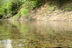 Steady Carpathian river Stock Footage