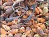 War zone scrap explosive-bombs leftovers 1 Stock Footage