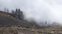 Fog in Tenerife mountans Stock Footage