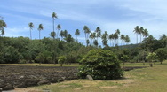 Stock Video Footage of Raiatea plams and Taputapuatea marae