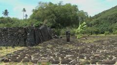 Stock Video Footage of Raiatea Taputapuatea marae 7
