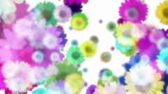 Retro Flowers BG 7 Stock Footage