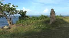 Raiatea standing stone by sea - stock footage