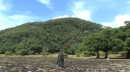 Stock Video Footage of Raiatea hill beyond marae 2