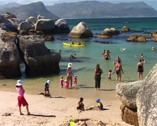 Boulders Beach and False Bay, Cape Town GFSD Stock Footage