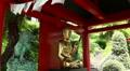 Buddha Tempel in a tropical Garden 20110422 151242 Footage