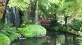 Koi Pond 20110422 153035 Footage