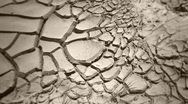 Desert draught Stock Footage