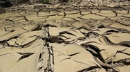 Cracked and layered desert floor Stock Footage