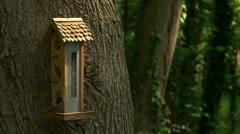 Birdhouse swinging in breeze Stock Footage